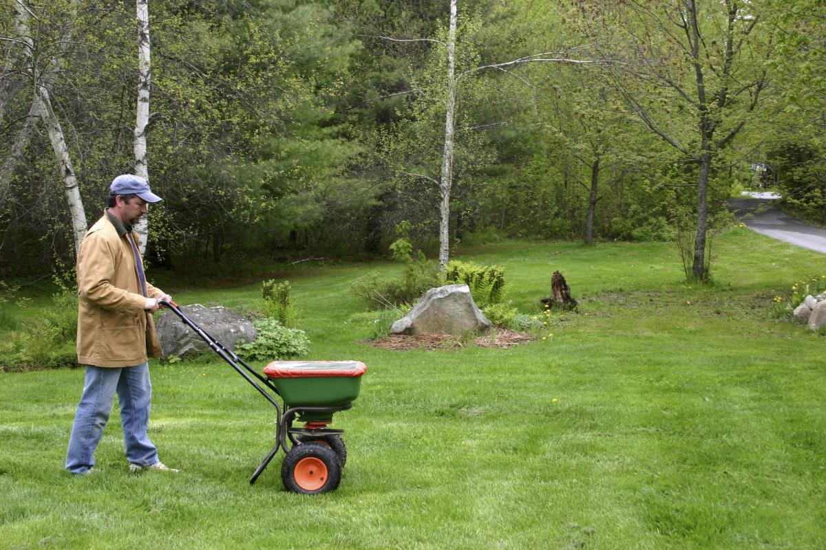 Fall lawn fertilizing tips