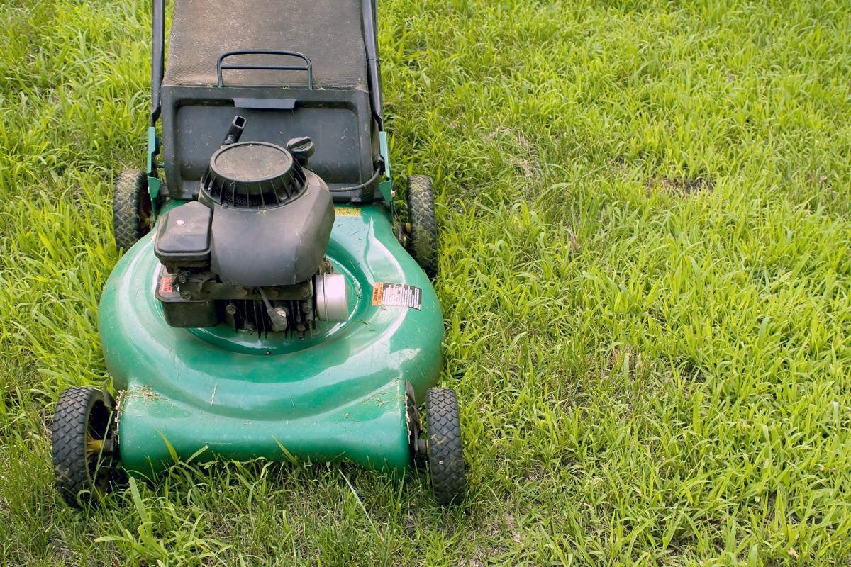 Summer lawn mowing tips